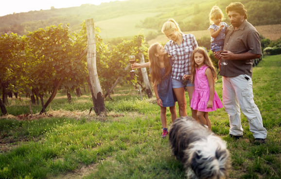 Wine Label Approvals Family Owned
